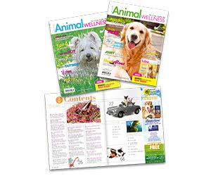 Free Issue Of Animal Wellness Magazine For Dogs And Cats