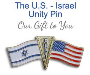 Free U.S - Israel Unity Pin