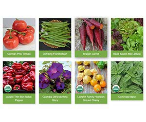Free Seed Savers Exchange Seed Catalog With Recipes, Tips And 20 New Seeds