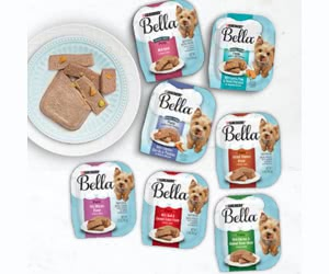 Free Purina Bella Wet Small Adult Dog Food