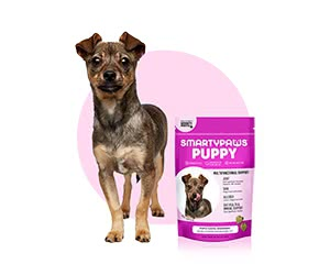 Free SmartyPaws Dog Food
