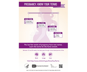 "Free ""Know Your Terms"" Pregnancy Poster"