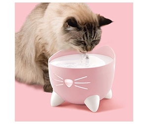 Free Ball Dome Toy For Cats From Catit
