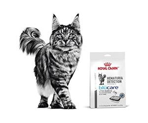Free Sample of Royal Canin Hematuria Detection Cat Food