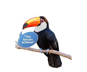 Free ZooZingo Animal Cards Set