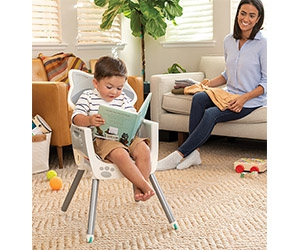 Free Grow-With-Me 4-in-1 Convertible High Chair Raccoon From Infantino