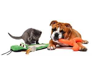 Free Pet Toys From Hartz