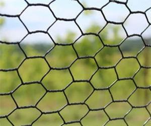Free Pet Fence Sample