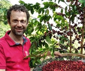 Free Brazillian Specialty Green Coffee Beans From Bean Belt Coffees