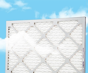 Free Air Filters Kit From Second Nature