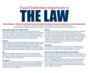 "Free ""EEO is the Law"" Poster"