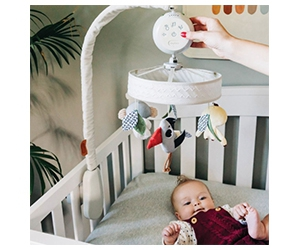 Free Tiny Love Boho Chic Baby Toys Collection