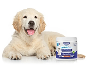 Free Allergy Care For Pets From Dermabliss