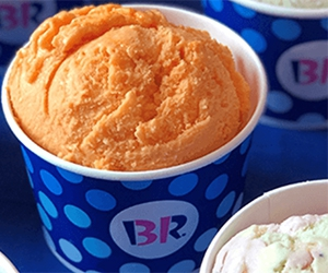 Free 2,5 Oz Scoop Coupon + Birthday Coupons From Baskin Robbins