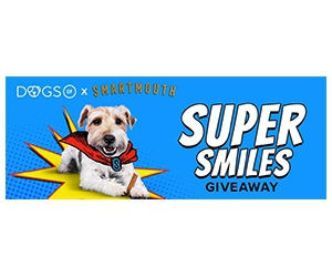 Free Smartmouth Dental Chews For Dogs